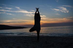 classes  yoga evita